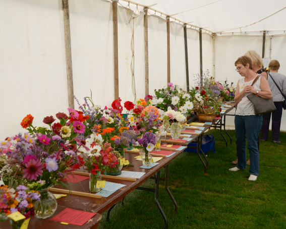 Image for The Wellow Flower Show and Country Fair 2019