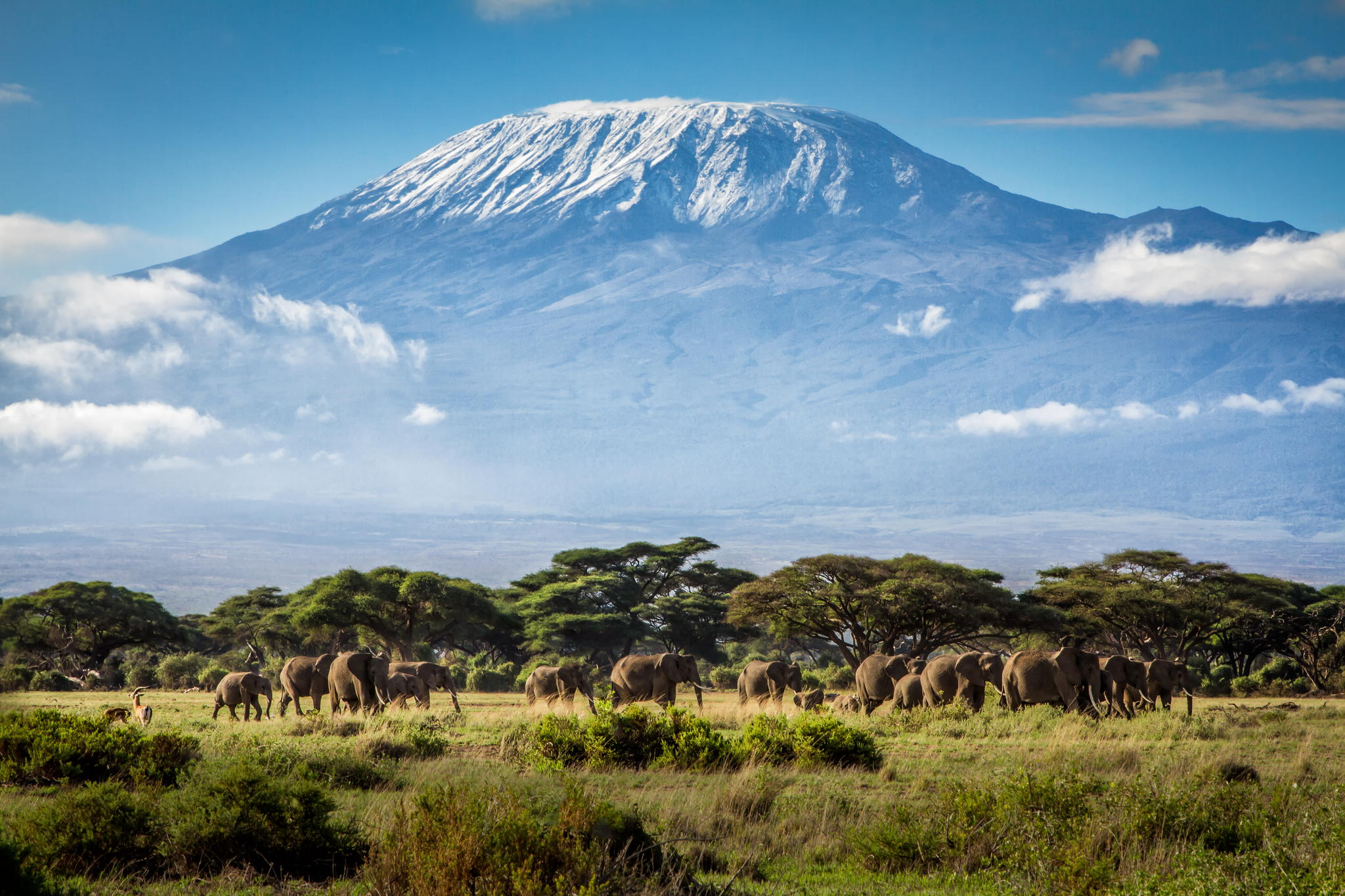 Image for Climb Kilimanjaro for Julian House