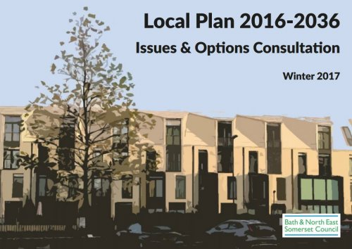 Local Plan 2016-2036 Issues and Options Consultation Cover