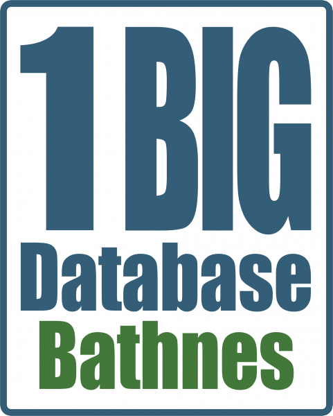 Bathnes 1 Big Database logo