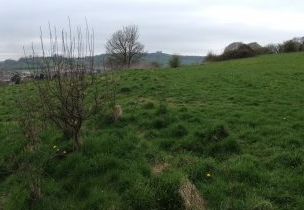 Photo of access land at Chelscombe Farm