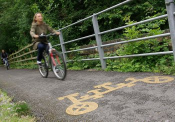 Cyclists on a cycle path