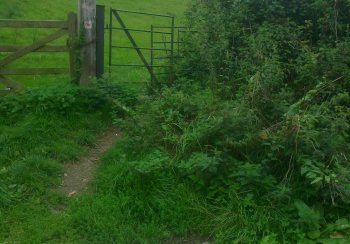 Path at Smallcombe Farm