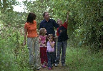 Family on a woodland walk