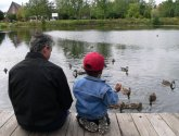 man and boy sitting feeding ducks